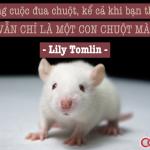 Rat Race – Cuộc đua loài chuột trong thế giới con người
