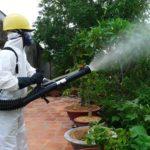 Nên phun thuốc diệt muỗi vào giờ nào để đạt hiệu quả cao nhất trong việc phòng ngừa muỗi và sốt xuất huyết?