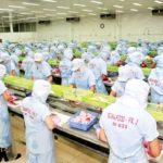 Điều kiện nhà xưởng theo tiêu chuẩn HACCP/ISO 22000
